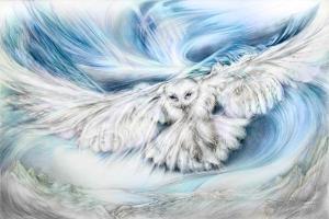 Destiny Owl
